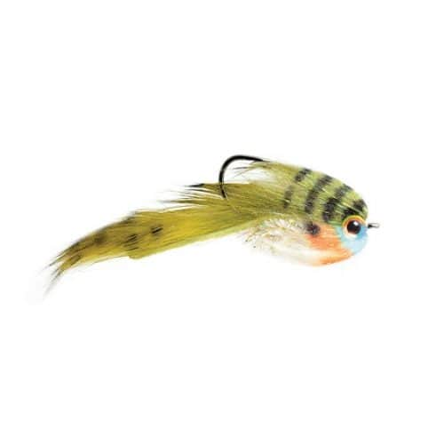 Belly Scratcher Minnow Bluegill
