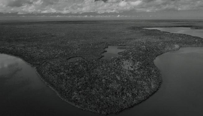 Everglades