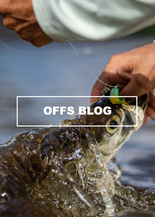 Fly Fishing Blog