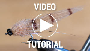 Giacobbas Skrimp Fly Tying Tutorial